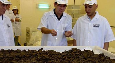 Qualidade da própolis brasileira impressiona empresários japoneses